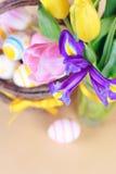 Les fleurs de source se ferment vers le haut Photos libres de droits