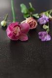 Les fleurs dentellent sur une obscurité en bois Photos libres de droits