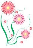 les fleurs dentellent trois Photos stock