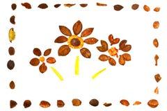 les fleurs encadrent l'ornamental trois Image libre de droits