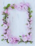 Les fleurs encadrent sur en bois blanc Photographie stock