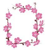 Les fleurs encadrent sur le blanc Image libre de droits