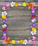 Les fleurs encadrent sur le bois Photo libre de droits