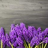 Les fleurs encadrent sur une table en bois foncée Photographie stock
