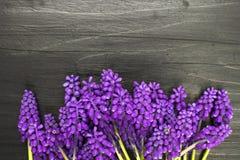 Les fleurs encadrent sur une table en bois foncée Image stock