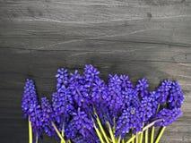 Les fleurs encadrent sur une table en bois foncée Photographie stock libre de droits