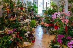 Les fleurs et les bouquets se tiennent dans un magasin de fleuriste photo stock