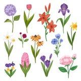 Les fleurs et l'aquarelle florale de vecteur ont fleuri l'invitation de carte de voeux pour épouser l'iris fleurissant d'hortensi illustration de vecteur