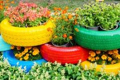 Les fleurs et les pots colorés de pneu Photo stock
