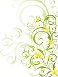 les fleurs florales de conception verdissent le jaune Photos stock