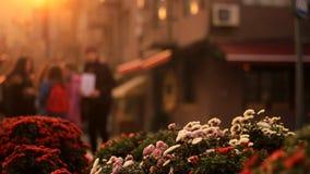 Les fleurs focalisées multicolores sur un fond d'une ville brouillée aménagent en parc avec les personnes de marche dans le couch banque de vidéos