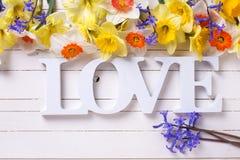 Les fleurs jaunes et le mot de narcisse aiment sur p en bois peint par blanc Image libre de droits