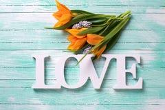 Les fleurs jaunes et le mot de tulipes aiment sur le backgro en bois de turquoise Images stock