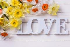Les fleurs jaunes fraîches et le mot de narcisse aiment sur la planche en bois blanche Photos stock