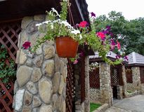 Les fleurs mises en pot décorent le café extérieur Photographie stock