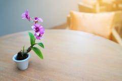 Les fleurs pourpres ont placé la table et le beau soleil de matin Images libres de droits