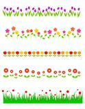 Les fleurs rayent/diviseurs Image stock