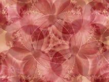 Les fleurs roses lacent le fond Images libres de droits