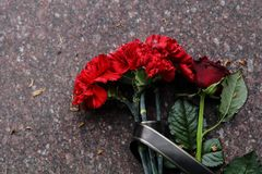 Les fleurs rouges d'oeillets et se sont lev?es vu sur la pierre comm?morative photos libres de droits