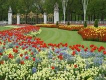 Les fleurs s'approchent du Palais de Buckingham Photo libre de droits