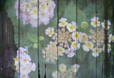 Les fleurs s'enveloppent sur le fond en bois Photographie stock