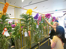 Les floralies en Thaïlande Images libres de droits