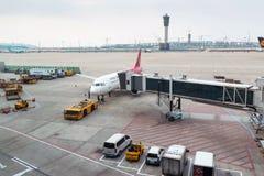 Les fonctionnaires d'aéroport supportent la charge Photo libre de droits