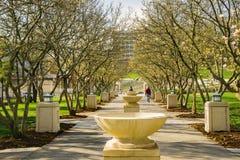Les fontaines rament au parc d'Elmwood, Roanoke, la Virginie, Etats-Unis image stock
