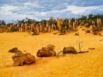 Les formations de roche de chaux de sommets, Australie occidentale photos libres de droits