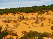 Les formations de roche de chaux de sommets, Australie occidentale photos stock