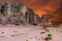Les formations géologiques en nature abandonnent la vallée du parc de Timna, Israël photos stock