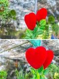Les formes de coeur de rouge Photos libres de droits