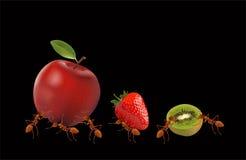 Les fourmis pomme, fraise et kiwi de transport puissants illustration de vecteur