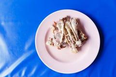 Les fragments d'os des poulets choisissent le foyer, poulet que l'os est placé sur un foyer mou de plat de rose, os image libre de droits