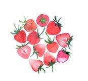 Les fraises juteuses mûres lumineuses groupent le croquis de main d'aquarelle Photo libre de droits