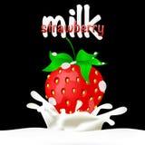 Les fraises plongées en lait avec éclabousse Photographie stock libre de droits