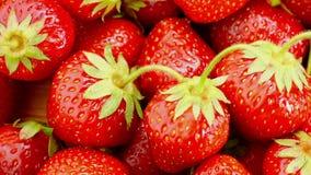 Les fraises rouges tournent banque de vidéos