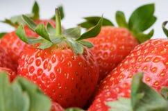 Les fraises se ferment vers le haut Images stock
