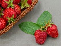 Les fraises sont fra?ches, juteux, savoureux sur un naturel images libres de droits