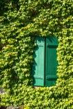 Les Frances, lierre ont couvert le mur de maison de volets en bois verts Photographie stock libre de droits
