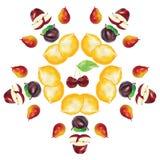 Les fruits de cerise de citron de poire d'Apple entourent la composition en cadre Illustration de Vecteur