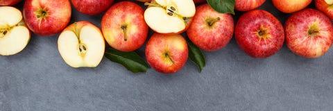 Les fruits de fruit de pomme de pommes slate la vue d'agrostide blanche de bannière de copyspace Photos stock