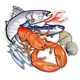 Les fruits de mer dactylographient l'illustration Photos libres de droits
