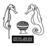 Les fruits de mer ont séché l'hippocampe et le caviar d'hippocampe, a illustration de vecteur
