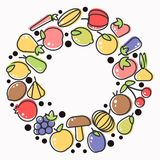 Les fruits et les baies organiques moissonnent l'affiche de la pomme et la mangue ou l'ananas frais, la poire naturelle, le raisi Image stock