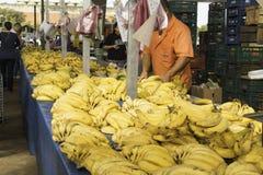 Les fruits frais et les légumes frais dirigent des fermes image libre de droits