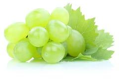 Les fruits frais verts de raisins portent des fruits des feuilles d'isolement sur le blanc Image stock
