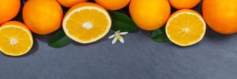 Les fruits oranges d'oranges slate la vue supérieure de bannière de copyspace Image stock
