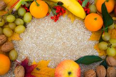 Les fruits se trouvent sur un panneau de paille pressée photos stock