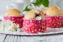Les gâteaux aux pommes faits maison ont décoré la fleur de pomme sur le DES en bois blanc Photos libres de droits